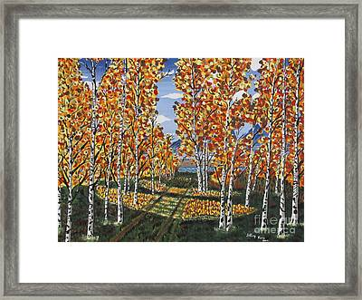 White Birch Reservoir  Framed Print
