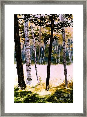 White Birch Trees Framed Print by Karol Wyckoff