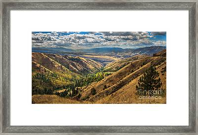White Bird Hill View Framed Print