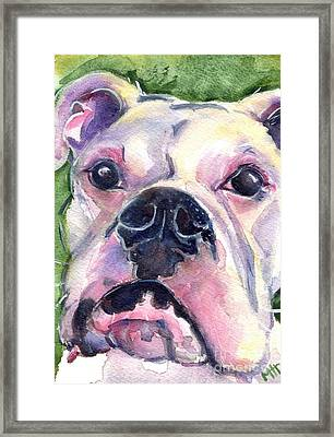 White Boxer Framed Print by Maria's Watercolor