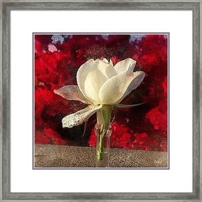 White Bud Framed Print by Rick Lloyd