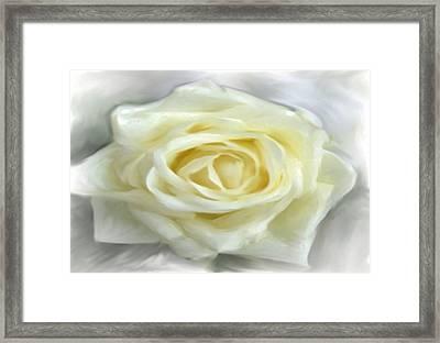 White Canvas Rose Framed Print