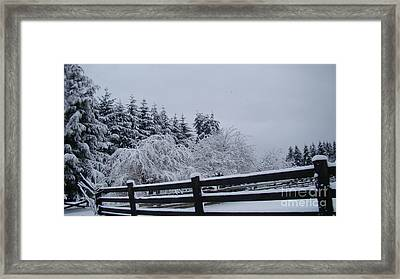 White Christmas Framed Print by Beverly Guilliams