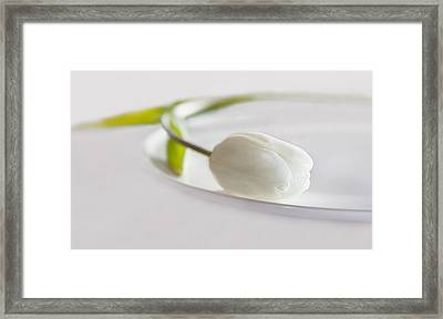 White Framed Print by Claudia Moeckel
