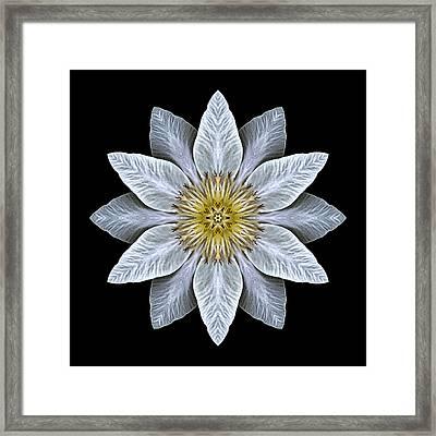 White Clematis Flower Mandala Framed Print