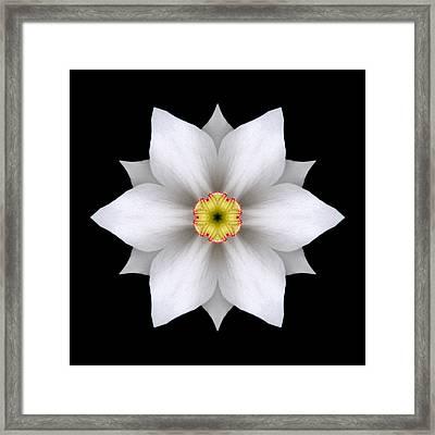 White Daffodil II Flower Mandala Framed Print by David J Bookbinder