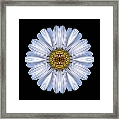 White Daisy Flower Mandala Framed Print