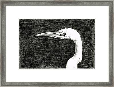 White Egret Art - The Great One - By Sharon Cummings Framed Print by Sharon Cummings