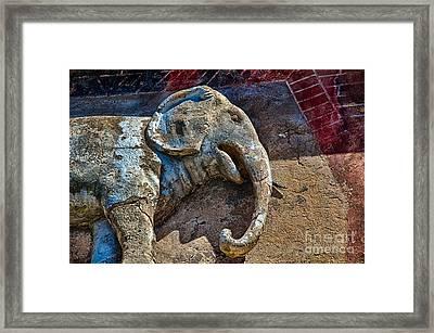 White Elephant Framed Print by Ken Williams
