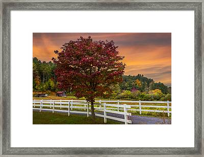 White Fences Framed Print