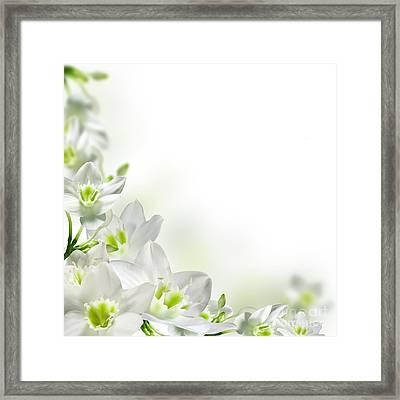 White Flower Frames Framed Print by Boon Mee
