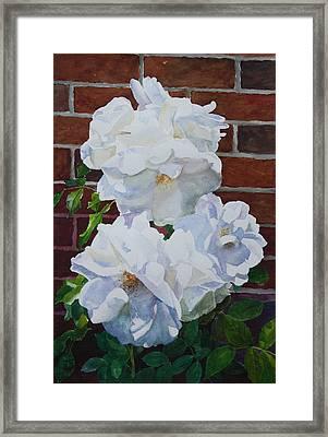 White Flower Framed Print by Helal Uddin