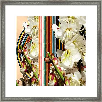 White Flower Medley Colorful Rainbow Stripes On The Backdrop Artist Navinjoshi  Framed Print by Navin Joshi