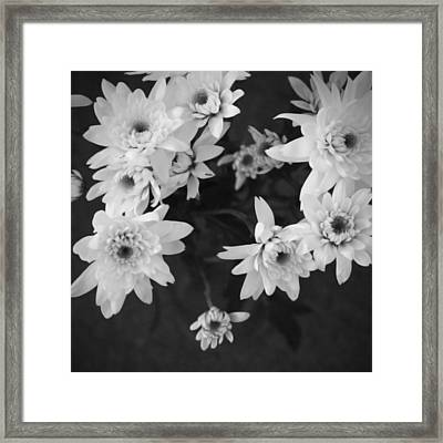 White Flowers- Black And White Photography Framed Print