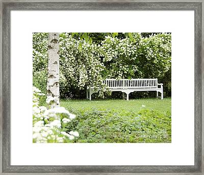 White Garden Iv Framed Print