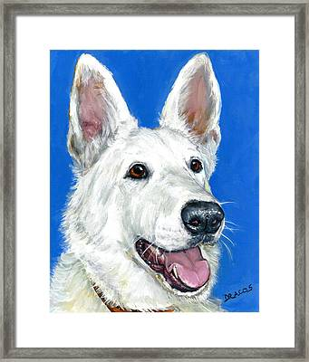 White German Shepherd On Blue Framed Print by Dottie Dracos