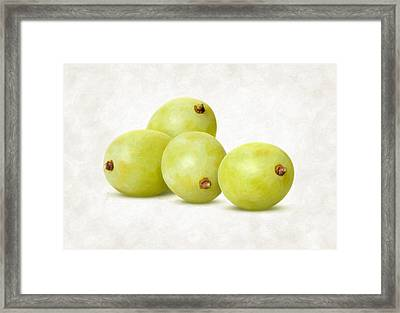 White Grapes Framed Print by Danny Smythe