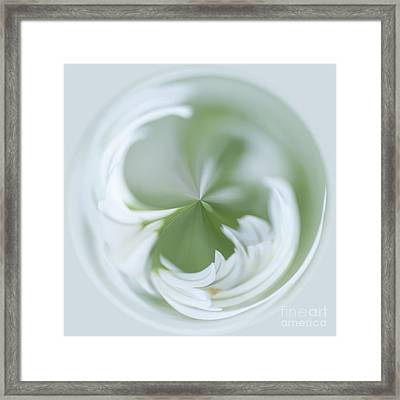 White Green And Round Framed Print by Anne Gilbert