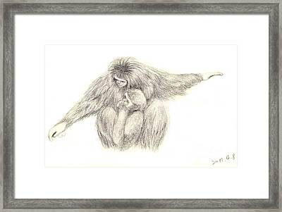 White Handed Gibbons--mother And Son Framed Print by Jingfen Hwu