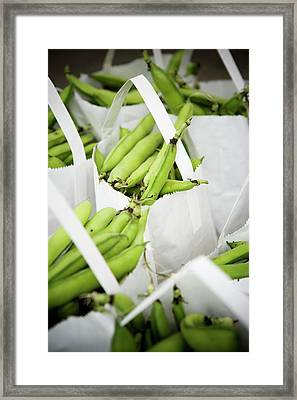 White Handled Bags Containing Fresh Framed Print