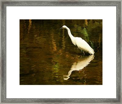White Heron Framed Print by Dick Wood