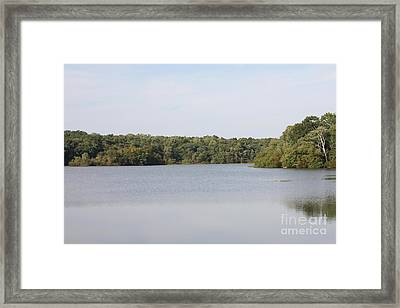 White Heron Lake Poconos Pa IIi Framed Print by John Telfer