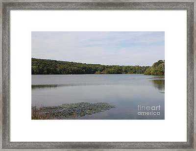 White Heron Lake Poconos Pa Framed Print by John Telfer