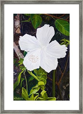 White Hibiscus Framed Print by Mike Robles