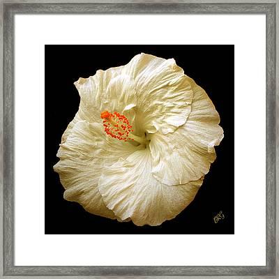 White Hibiscus Portrait Framed Print by Ben and Raisa Gertsberg