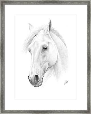 White Horse Framed Print