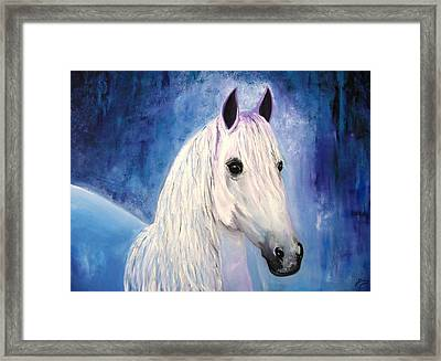 White Horse Framed Print by Doris Cohen