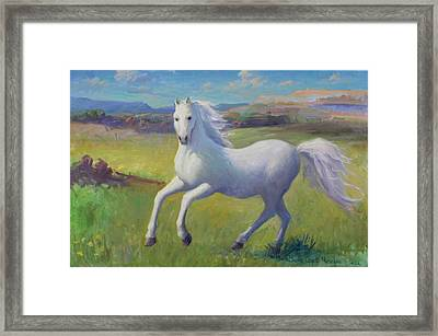 White Horse Framed Print by Gwen Carroll
