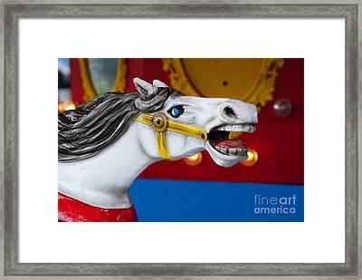 White Horse Framed Print by Juli Scalzi