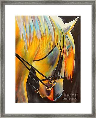 White Horse Framed Print by Robert Hooper