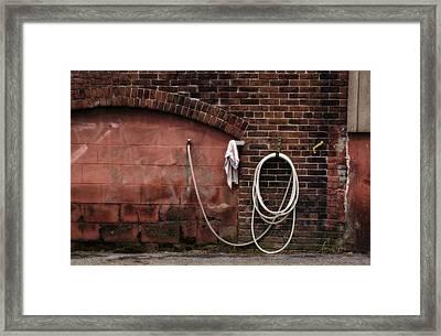 White Hose Framed Print