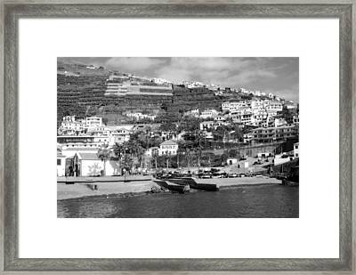 White Houses Framed Print by Tracy Winter