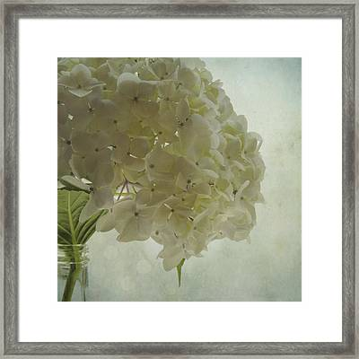 Framed Print featuring the photograph White Hydrangea by Sally Banfill