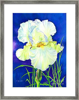 White Iris Framed Print by Barbara Jewell