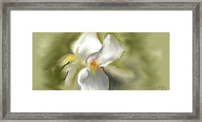 Framed Print featuring the digital art White Iris by Jessica Wright