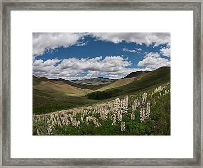 White Knob Mountains Spring Framed Print by Leland D Howard