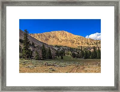 White Knob Mountain Peak Framed Print by Robert Bales