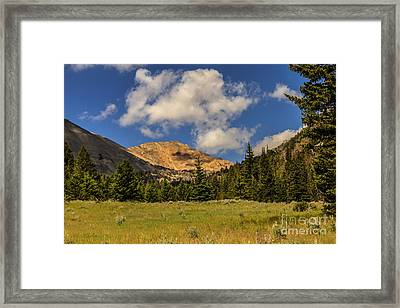 White Knob Moutains Framed Print