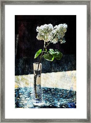 White Lilacs Framed Print by Randi Grace Nilsberg