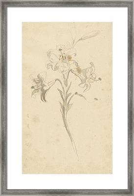 White Lily, Elias Van Nijmegen Framed Print by Quint Lox