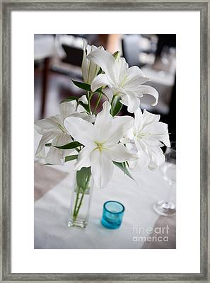 White Lilium Lily Flowers Blooming In Vase  Framed Print