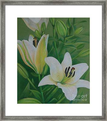 Framed Print featuring the painting White Lily by Pamela Clements