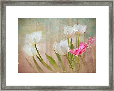 White Lily Show Framed Print by Bonnie Willis