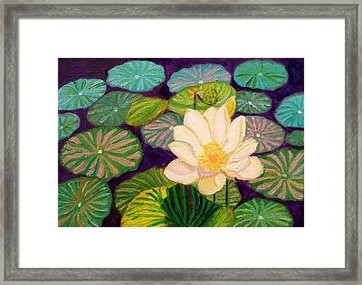 White Lotus Flower Framed Print
