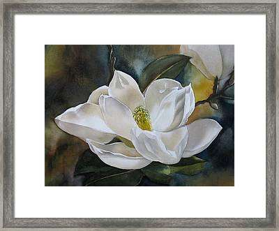 White Magnolia Framed Print by Alfred Ng