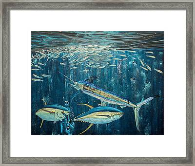 White Marlin Original Oil Painting 24x36in On Canvas Framed Print by Manuel Lopez